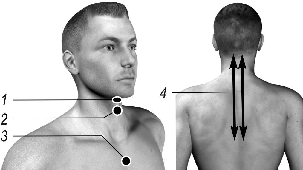 Схема лечения ларингита